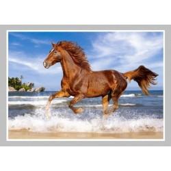 Kůň v moři